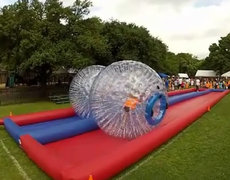 Hamster Ball Race Interactive