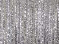 Silver Backdrop Curtain