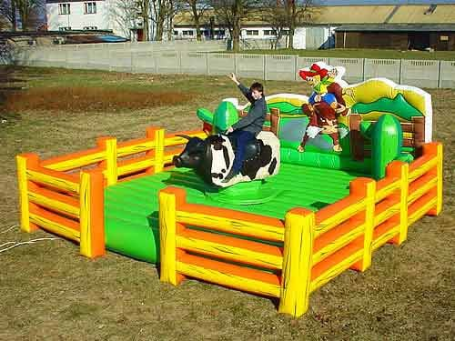 mechanical bull rentals dayton ohio