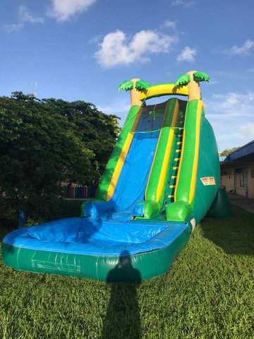 24ft Tropical Slide