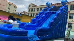 17 ft Whale waterslide w(DTpool)