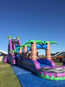 30 ft High Purple Crush Waterslide (pool)