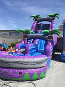 Purple Crush 18ft water slide