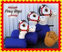 Pony Hops size small 3-6 yrs old