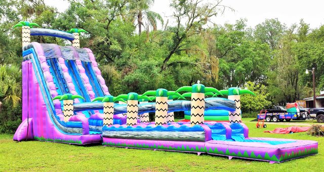 30ft Purple Plunge Water Slide Bounce House Party Rentals Bouncealotinflatables Com Tampa Fl