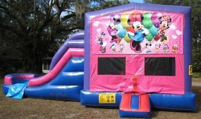 Minnie Mouse 4 in 1 Pink and Purple Two Lane WET Combo - UNIT #216