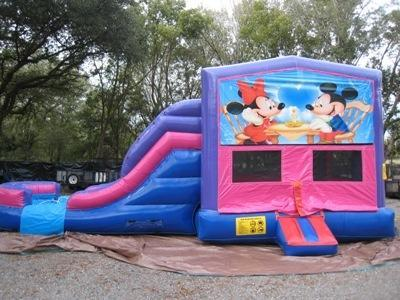 Mickey and Minnie 4 in 1 Pink and Purple Two Lane WET Combo - UNIT #216