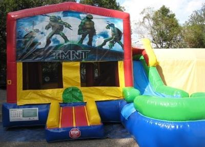 Ninja Turtles Multi colored 6 in 1 Ultimate WET Combo - UNIT #217