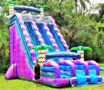 *NEW* 30ft Tall Purple Tropical Dry Slide - UNIT #554