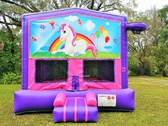 New HOT Theme *Unicorn Pink and Purple Bounce w/Hoops UNIT #103