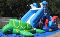15ft Seahorse & Turtle Dry Slide - UNIT #501