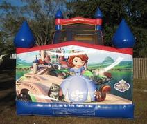 18ft Sofia The First Dry Slide - UNIT #528