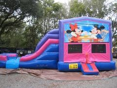 Mickey and Minnie 4 in 1 Pink and Purple Two Lane DRY Combo - UNIT #216