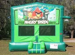 Angry Birds 2 in 1 Green Bounce w/Hoops - UNIT #113