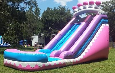 *ON SPECIAL for a LIMITED TIME *NEW* 18ft Princess Tiara Water Slide - UNIT #541