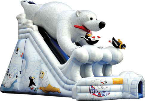 20 Ft Polar Bear Plunge Dual Lane Slide