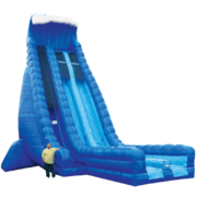 32ft Monster Dual Dry Slide
