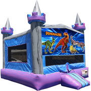 Dinosaurs Crystal Castle Fun Jump