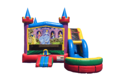 Disney Princess Party Palace Wet or Dry Combo