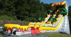 Dinosaur Claw 19 foot Wet or Dry Slide