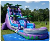 24ft Purple Waves Waterslide