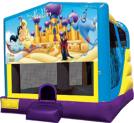 Aladdin Large C4 Dry Combo with Slide & Basketball Hoop