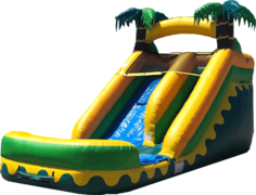 14ft Water Slide