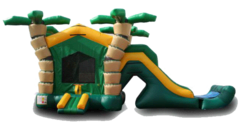 "<b><font color=""red"">Tropical Themed Combo</font><br><small><font color=""blue"">Bouncy castle with large slide</font><br>Great for ages 5+</small></b>"