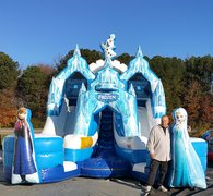 8D - 17' Frozen Double Lane Water Slide