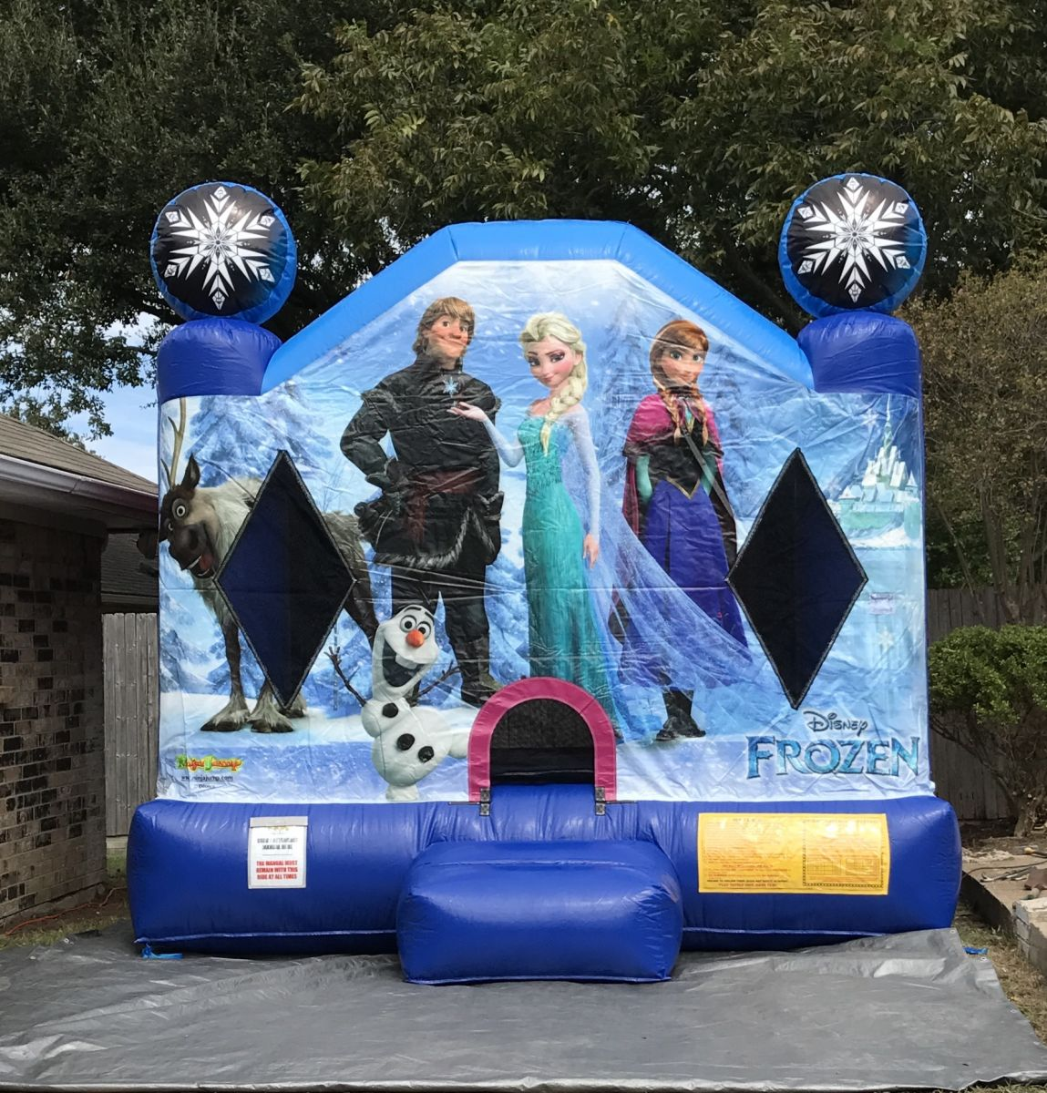 Licensed Frozen Bounce House Rental Dallas Tx