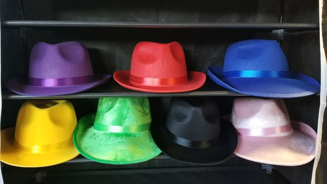 Fedora Hat Collection