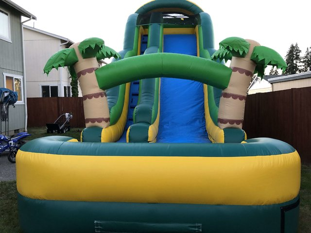 18' Tropical Palm Tree Water Slide