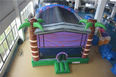 Luau 5in1Best for ages 2+ and Up |1 Outlet Needed **ADD A THEME**