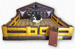 Wild Mechanical Bull