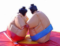 "<font color=red><b>Sumo Suits<br></font></b><small>Best for ages 16+ and Up<font color=red> |</font><font color=""orange""><b>0 Outlet Needed</font><br><font color=blue> Size 10 x 10 x 0</font>"
