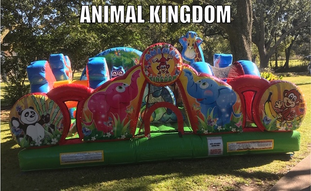 Animal Kingdom Toddler Jump House Rental Erath LA