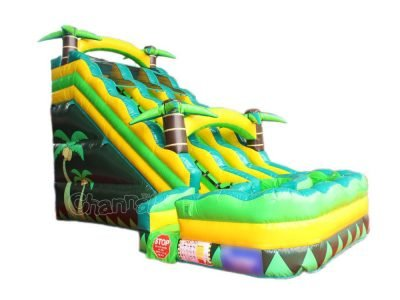 A 18' Tropical Double Lane Water Slide