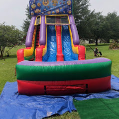 Emoji 18' Double  Lane Water Slide