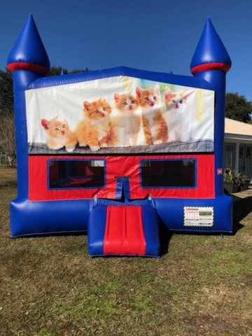 Kitty Cat Bounce House with Basketball Goal