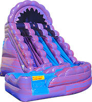 20' Purple Rain  Wild Rapids Water Slide