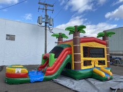 Paradise  Dual Lane  Bounce House Combo (WET)