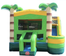 Tropical 5 in 1 SPLASH  Bounce House Combo (WET)