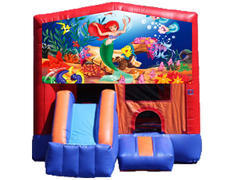 3-in-1 Combo with Front Slide - Little Mermaid (Dry)