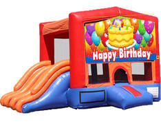 4-in-1 Combo with Double Slides - Birthday Cake (Dry)