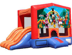 4-in-1 Combo with Double Slides - Mickey & Friends (Dry)