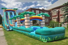 Tropical 22ft Double Lane Waterslide