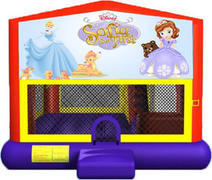 Sofia The First 4-in-1 Combo