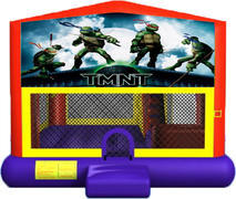 Teenage Mutant Ninja Turtles 4-in-1 Combo