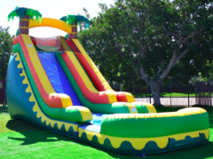 18 ft Aloha Slide w/pool