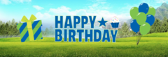 Blue Yard Signs (Happy Birthday)